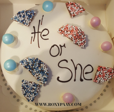 he or she gender reveal